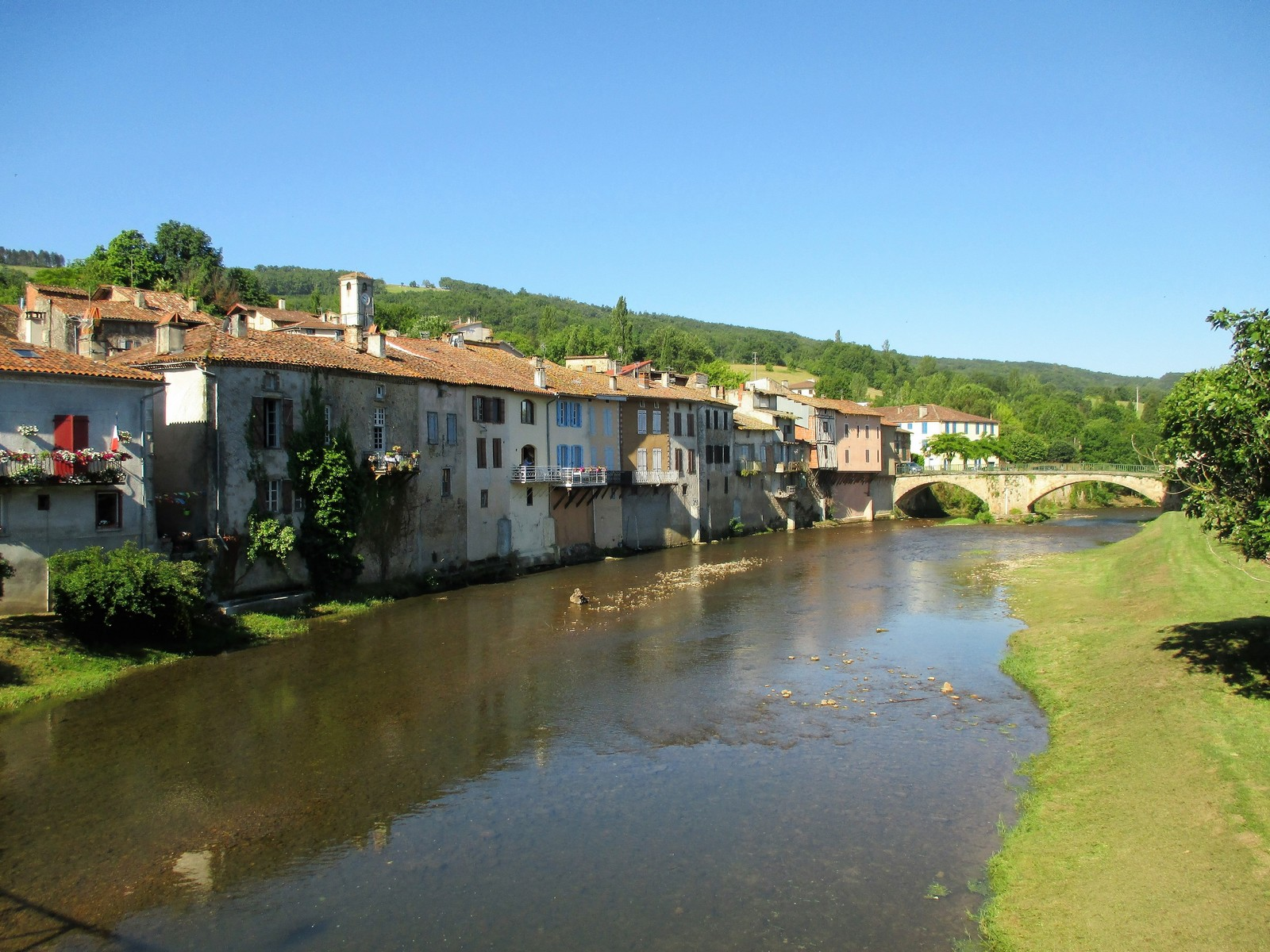 campagnol.fr